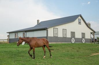 Horse barn built by Stable Hollow Construction.