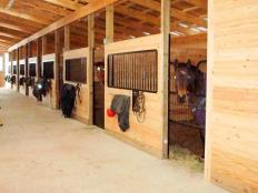 These horse stalls are found in a horse barn built by Stable Hollow Construction
